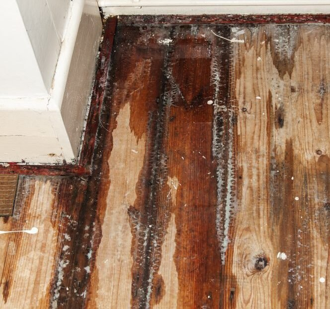 floor damage from water